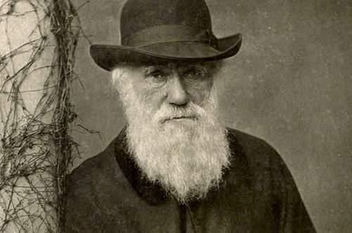 Charles Darwin in Hindi