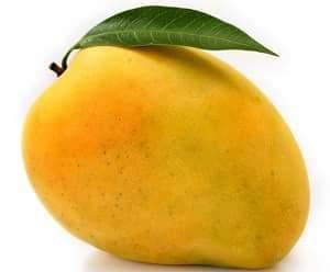 mango hindi