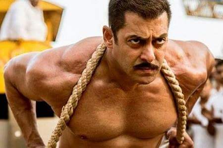 sultan film facts in hindi
