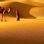 """भारत के सबसे बड़े रेगिस्तान """" थार रेगिस्तान """" से जुड़ी यह 12 बातें आपको पता ना होंगी !"""