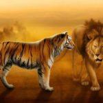 शेर और बाघ में क्या अंतर है? चीते, तेंदुए और जगुआर के बारे में भी जानें।