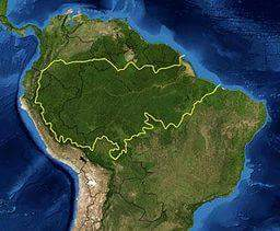 अमेज़न के वर्षावन - Amazon Rain Forests