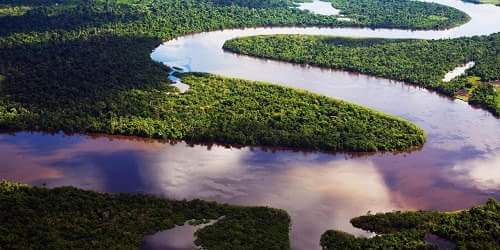 About Amazon River in Hindi